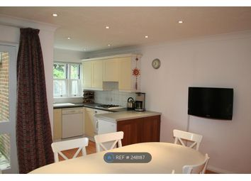 Thumbnail 3 bed terraced house to rent in Waldeck Road, Chiswick