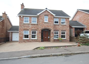 Thumbnail 5 bed detached house to rent in Mount Pleasant View, Newtownabbey