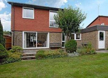 Thumbnail Link-detached house to rent in Sunninghill, Berkshire