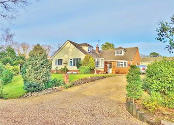 Thumbnail 4 bed detached bungalow for sale in Giddy Lake, Wimborne