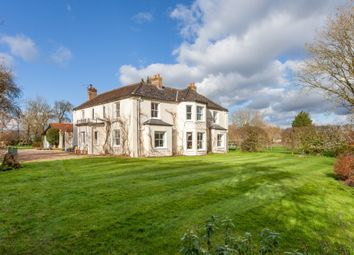 Thumbnail 6 bed detached house for sale in Low Street, Ilketshall St. Margaret, Bungay