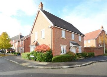 Thumbnail 4 bed detached house for sale in Chrysanthemum Drive, Shinfield, Reading