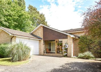 Thumbnail 3 bed detached bungalow for sale in Aldersey Road, Guildford, Surrey
