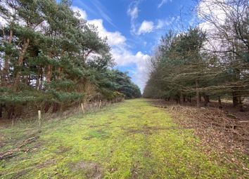 Thumbnail Land for sale in Bromeswell, Woodbridge