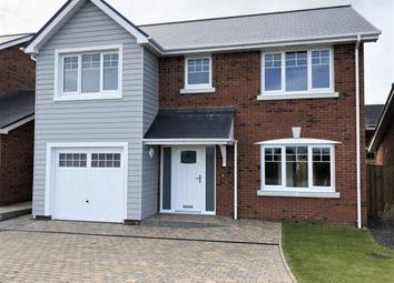 Thumbnail 4 bedroom detached house to rent in Royal Park, Ramsey, Isle Of Man