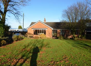 Thumbnail 3 bed detached bungalow to rent in Spring Lane, Mapperley, Nottingham