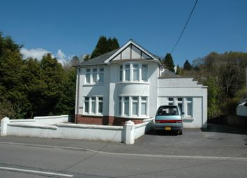 Thumbnail 4 bed property to rent in Velindre, Llandysul