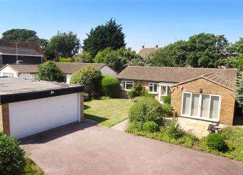 Thumbnail 3 bed bungalow for sale in Preston Paddock, Rustington, Littlehampton