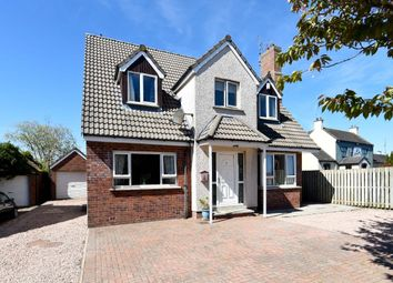 Thumbnail 4 bed detached house for sale in Bridle View, Lisburn