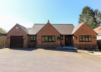 Thumbnail 3 bed detached bungalow for sale in Stortford Road, Little Hadham, Ware