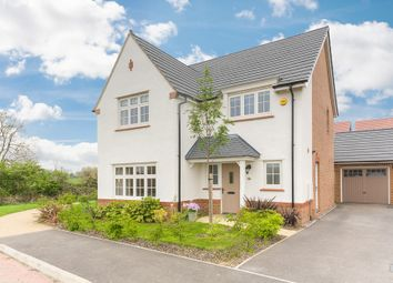 Thumbnail 4 bed detached house for sale in Pynkeny Close, Earls Barton