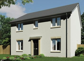 """Thumbnail Detached house for sale in """"The Hume"""" at Meaford Avenue, Dunbar"""