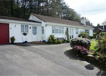 Thumbnail 3 bed detached bungalow for sale in Blackborough, Cullompton
