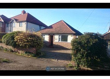 Thumbnail 4 bed bungalow to rent in Longstomps Avenue, Chelmsford