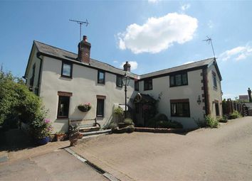 Thumbnail 4 bed cottage for sale in Llangrove, Ross-On-Wye