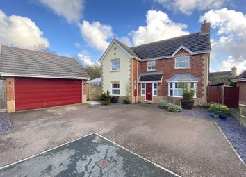 Thumbnail 4 bed detached house for sale in Boniface Close, Pevensey, East Sussex