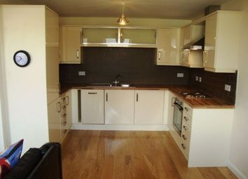 Thumbnail 2 bed flat to rent in Cwrt Maes Y Llyn, Newport