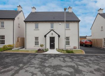 Thumbnail 4 bed detached house for sale in 20, Crawfordsburn Way, Newtownards
