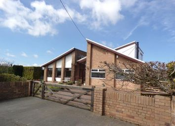 Thumbnail 4 bed detached house for sale in Caelcoed Lane, Brynford, Holywell, Flintshire