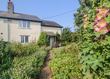 Thumbnail Semi-detached house for sale in Great Bradley, Newmarket