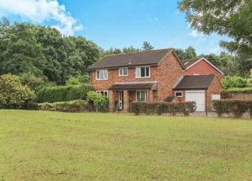 Thumbnail 4 bedroom detached house for sale in Bluebell Close, Taunton