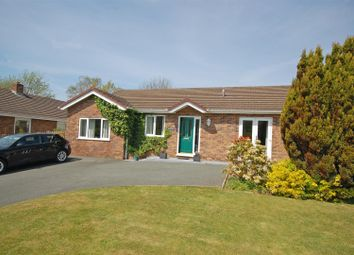 Thumbnail 3 bed detached bungalow for sale in Lon Glanfred, Llandre, Aberystwyth