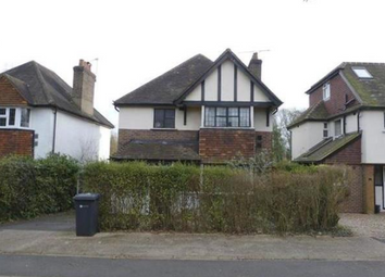Thumbnail 8 bed semi-detached house to rent in Ash Grove, Guildford