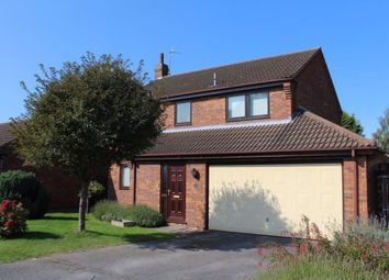Thumbnail 4 bed detached house to rent in Deer Park Drive, Wollaton, Nottingham