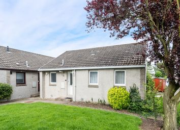 Thumbnail 2 bed bungalow for sale in Mclellan Court, Friockheim, Angus