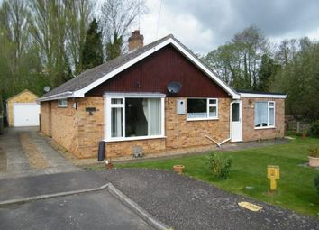 Thumbnail 4 bed bungalow for sale in Shouldham, Norfolk