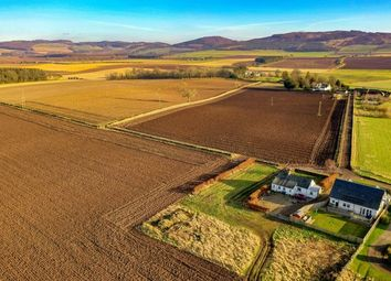 Thumbnail Land for sale in Land 20 Metres North East, Of Cairn Cottage, Kinnochtry Coupar Angus