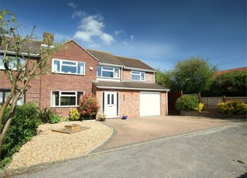 Thumbnail 4 bed semi-detached house for sale in Tern Way, St. Neots