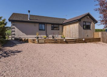 Thumbnail 3 bedroom bungalow for sale in Forglen, Turriff, Aberdeenshire