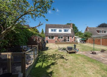 Thumbnail 4 bedroom detached house for sale in Langley Road, Chedgrave, Norwich, Norfolk