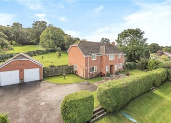 Thumbnail 5 bed detached house for sale in Monkton, Honiton, Devon