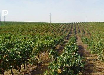 Thumbnail Land for sale in Aveiro, Silver Coast, Portugal