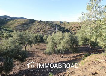 Thumbnail Land for sale in Benajarafe, Málaga, Spain