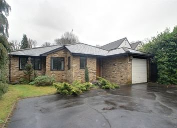 Thumbnail 4 bed detached bungalow to rent in Oak End Way, Woodham, Surrey