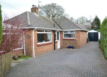 Thumbnail 2 bedroom bungalow for sale in Bearcross, Bournemouth, Dorset