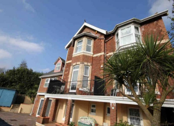 Thumbnail Studio to rent in Ruckamore Road, Torquay
