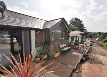 Thumbnail 3 bed detached bungalow for sale in Waterleat Road, Paignton, Devon