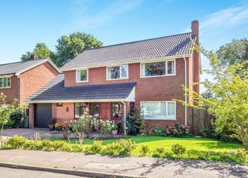 Thumbnail 4 bed detached house for sale in Wroxham, Norwich, Norfolk