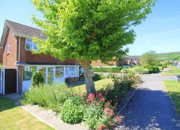 Thumbnail 4 bedroom detached house for sale in Newham Lane, Steyning