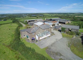 Thumbnail Farm for sale in Bridgerule, Holsworthy, Devon