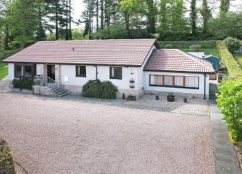 Thumbnail 4 bed detached bungalow for sale in Sandeman Place, Luncarty, Perth