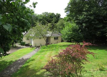 Thumbnail 3 bed detached bungalow for sale in Blissford, Fordingbridge