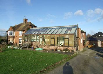 Thumbnail 2 bedroom detached bungalow to rent in Broadwater Road, West Malling, Kent.