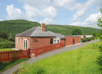 Thumbnail 4 bed detached bungalow for sale in Knighton, Powys