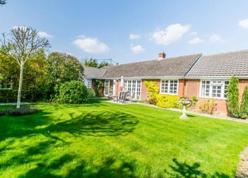 Thumbnail 4 bed bungalow for sale in Hadstock, Cambridge