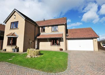 Thumbnail 4 bed detached house for sale in Maritime Avenue, Hartlepool, Durham